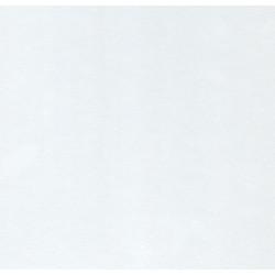 Laminatbänkskiva Vit 28x610x3000